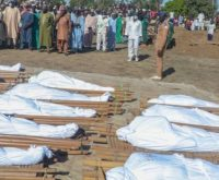 Slained Borno Farmers